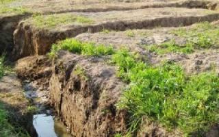 Какой фундамент лучше на глинистой почве для дома из кирпича?