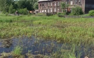 Какой фундамент лучше для дома из бруса на болотистой?