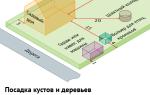 Какой забор можно ставить между соседями по закону в беларуси?